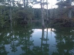 Mississippi lakes images Lake washington 2 day fishing jpg