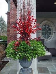 the 25 best christmas topiary ideas on pinterest large outdoor