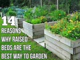 making raised beds for vegetable garden fabulous making a raised