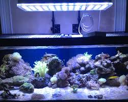 led aquarium lights for reef tanks 48 inches reef tank in florida orphek aquarium led lighting