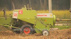 claas markant 55 a conventional baler used to raked crops