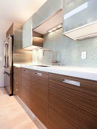 Kitchen Cabinets With Pulls Contemporary Kitchen Cabinet Pulls Houzz
