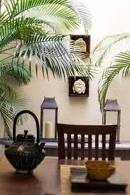 home interior garden best 25 tropical interior ideas on tropical sofas