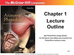 Human Anatomy And Physiology Chapter 1 Chapter 1 Major Themes Of Anatomy U0026 Physiology Ppt Video Online