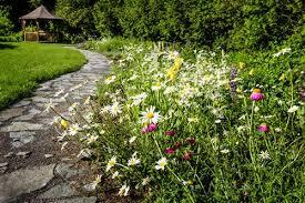 Landscape Design Online by Garden Design Garden Design With Wildflower Seed Specialists John
