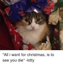 christmas die kitty christmas meme