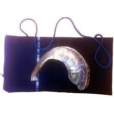 how much is a shofar silver plated rams horn shofar menorah israel cart