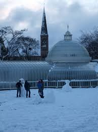 panoramio photo of glasgow botanic gardens in winter