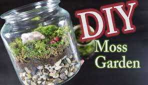 diy moss terrarium how to make a moss garden youtube
