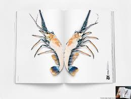 wmf kitchen knives wmf kitchen knives wmf knife lobster print ad by leo burnett