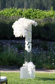 Orchid Centerpieces Best 25 White Orchid Centerpiece Ideas On Pinterest Wedding
