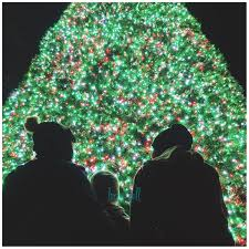 how to take pictures of the christmas tree with your phone
