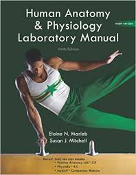 Anatomy And Physiology Lab Practical 2 Human Anatomy U0026 Physiology Lab Manual Main Version 9th Edition