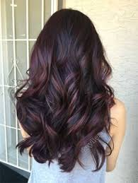 brown plum hair color plum hair deep violet base and mahogany violet toned balayage