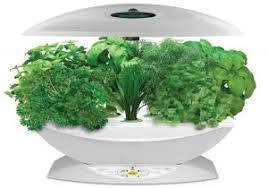 indoor herb garden kit fresh iindoor herb garden kit canadian tire