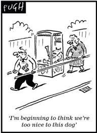 barking orders won u0027t train dog barbara woodhouse u0027s strict