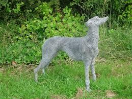 sculpture greyhound metal chicken wire netting mesh standing