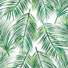 vector illustration of green palm tree leaf seamless pattern