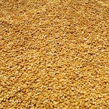 Fiber Soil by Free Images Farm Seed Bean Ripe Environment Food