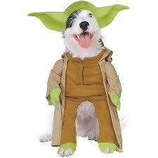 Charmander Halloween Costume German Shepherd Halloween Costumes Collection Ebay