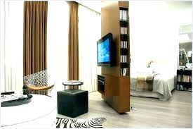 Studio Apartment Dividers Room Divider Ideas For R  frivgameco