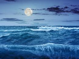 what causes ocean tides more than the moon u0027s gravity business