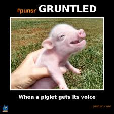 Dictionary Meme - punsr gruntled meme punsr com there is a joke in every word