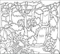 free coloring page of the rainforest roe and in the forest coloring page free printable coloring forest