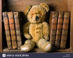 teddy bear with books on bookshelf stock photo royalty free image