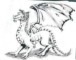 black and white dragon drawing zodiac images wallpaper clip