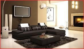 idee deco salon canape noir canape noir blanc 77911 idee deco salon canape noir décoration