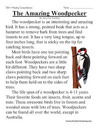 printable reading comprehension test the amazing woodpecker comprehension worksheets wnc preschool