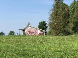 bernie sanders supersized large barn mural turns heads necn