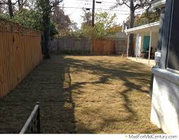 mad for mid century done put in new backyard grass