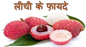lychee fruit ल च क फ यद health benefits of lychee litchi for