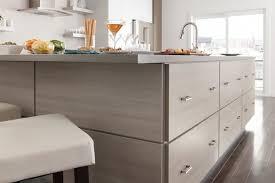 Modern Kitchens Modern Kitchen New York By Martha Stewart - Martha stewart kitchen cabinet