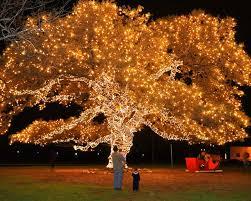 Heritage Park Christmas Lights 87 Best Farmers Market Usa Images On Pinterest Farmers