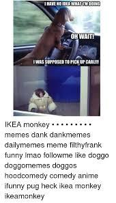 Ikea Monkey Meme - 25 best memes about ikea monkey meme ikea monkey memes