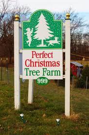 christmas tree farm sign christmas lights decoration