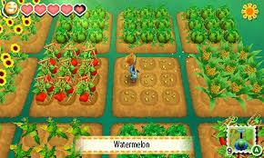 Home Design Story Jeux by Story Of Seasons Nintendo 3ds Amazon Co Uk Pc U0026 Video Games