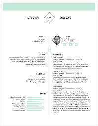 pages templates resume 1 page resume exles professional curriculum vitae resume