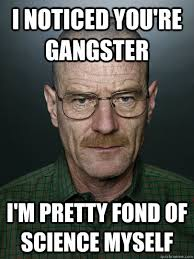 Internet Gangster Meme - i noticed you re gangster i m pretty fond of science myself