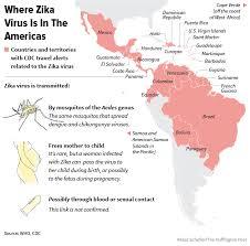 map of usa zika who declares health emergency around zika virus huffpost