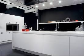 black and white kitchens ideas black and white kitchen designs with minimalist cabinet kitchen