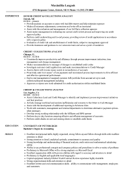 resume summary of qualifications for cmaa credit collections analyst resume sles velvet jobs