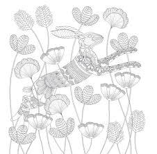 colouring book adults u2013 millie marotta u0027s animal kingdom