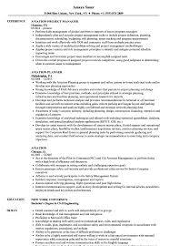 free resume template layout sketchup program car remote aviation resume sles velvet jobs