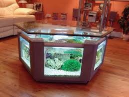 unique sustainable home designs in c letter shape house aquariums