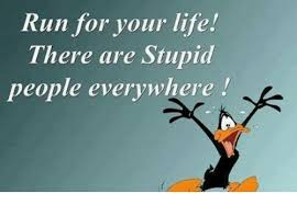 Stupid People Everywhere Meme - run for your life there are stupid people everywhere meme on me me
