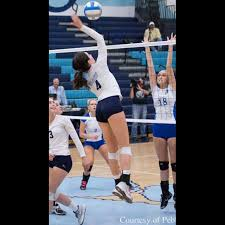 northern lights volleyball mn sportsrecruits sophey stepanek